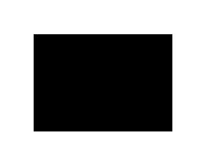 stussy_logo