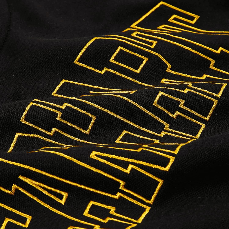 Carhartt Felpa Hooded Theory Embroidery Sweat- BLK-COISA 1