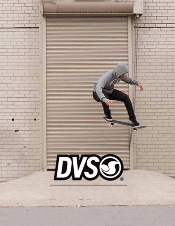 DVS 2