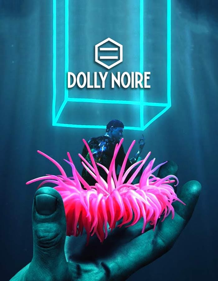 dolly noire 700x900