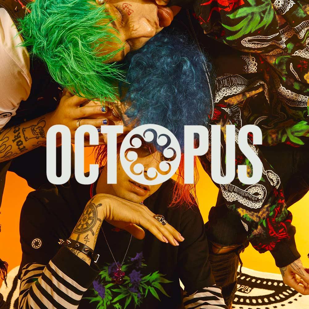 Octopus banner 13